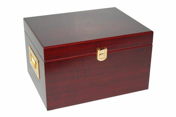 Shooshyne Shoebox Amp Kit Valet Box